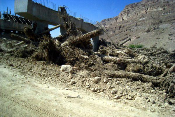 2008_yemen04B